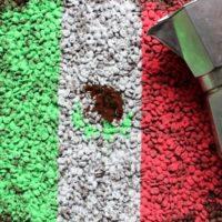 Meksyk Maragogype