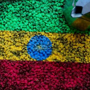 Najwyższej jakości świeżo palona Arabika Etiopia Sidamo