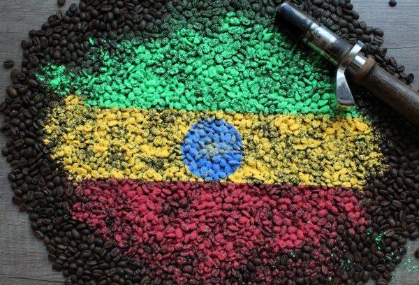 Najwyższej jakości świeżo palona Arabika Etiopia Yirgachiffe