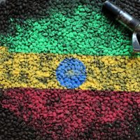 Etiopia Yirgacheffe