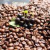 Kawa smakowa aromatyzowana czarna porzeczka