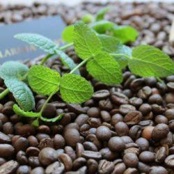 Kawa o smaku miętowym