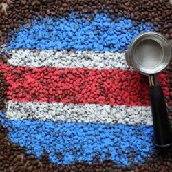 Kostaryka Tarrazu